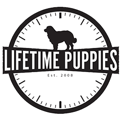 Lifetime Puppies